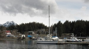 Auke Bay harbor from Fishermen's Bend. Photo by Dave Donaldson.