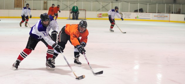 Funter Bay's Michael Nelson (left) fends off Tigers' Jared Weems during a C Tier title game won, 4-3, by the Tigers.