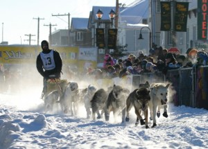 The Yukon Quest. (Photo from Wikipedia Commons)