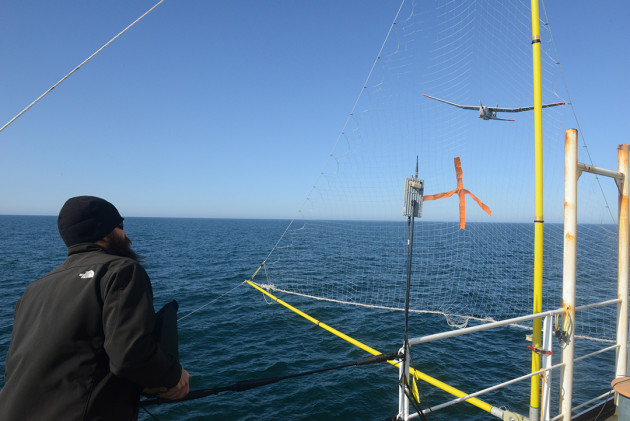 Chris Thompson, an Unmanned Aircraft System operator for AeroVironment, directs a Puma All Environment UAS into a net mounted to the Coast Guard Cutter Healy during an exercise in the Arctic Aug. 23, 2014. Researchers from the Coast Guard Research and Development Center, based in the New London, Conn., and the National Oceanic and Atmospheric Administration deployed the UAS to test its capabilities in the Arctic. (Coast Guard photo by Petty Officer 1st Class Shawn Eggert)